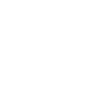 Policumb, Politecnico di Torino, logo